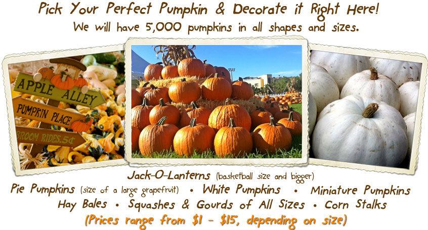 pumpkin-page-1